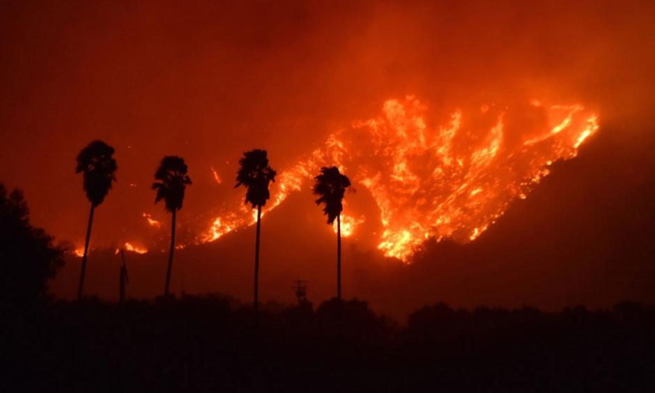 Palm trees are silhouetted by flames from the Thomas Fire, which had charred an estimated 25,000-30,000 acres north of the city of Santa Paula in Ventura County Monday night. (Ryan Cullom / Ventura County Fire Department photo)