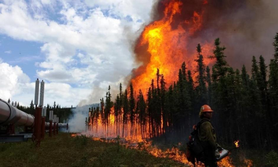The Aggie Creek fire burns along the Trans-Alaska Pipeline in June. Photo: USDA/ flickr