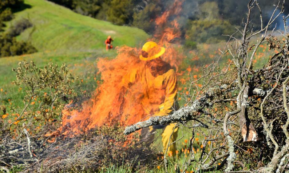 Western Wildfire Season 2020