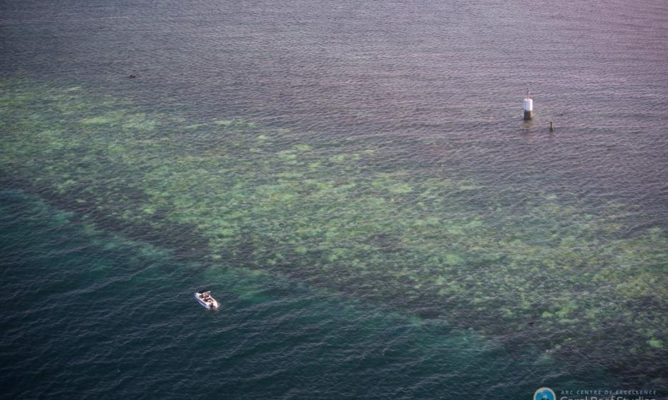 Bleaching of the Great Barrier Reef observed by aerial survey. Photo: Terry Hughes, ARC Centre of Excellence for Coral Reef Studies)