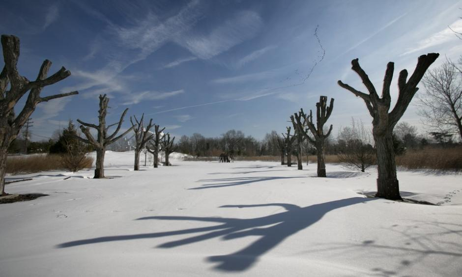 Scenic New Jersey after the weekend winter storm, Grounds For Sculpture in Hamilton. Photo: Michael Mancuso, NJ.com