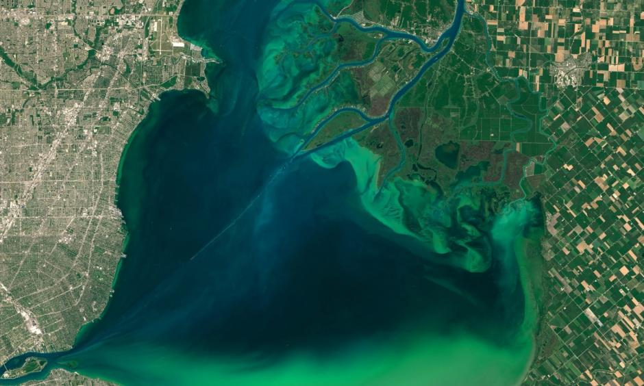 An image captured by Operational Land Imager on the Landsat 8 satellite of algal blooms around the Great Lakes, visible as swirls of green in this image of Lake St. Clair and in western Lake Erie. Photo: EPA/NASA /Goddard's MODIS Rapid Response Team