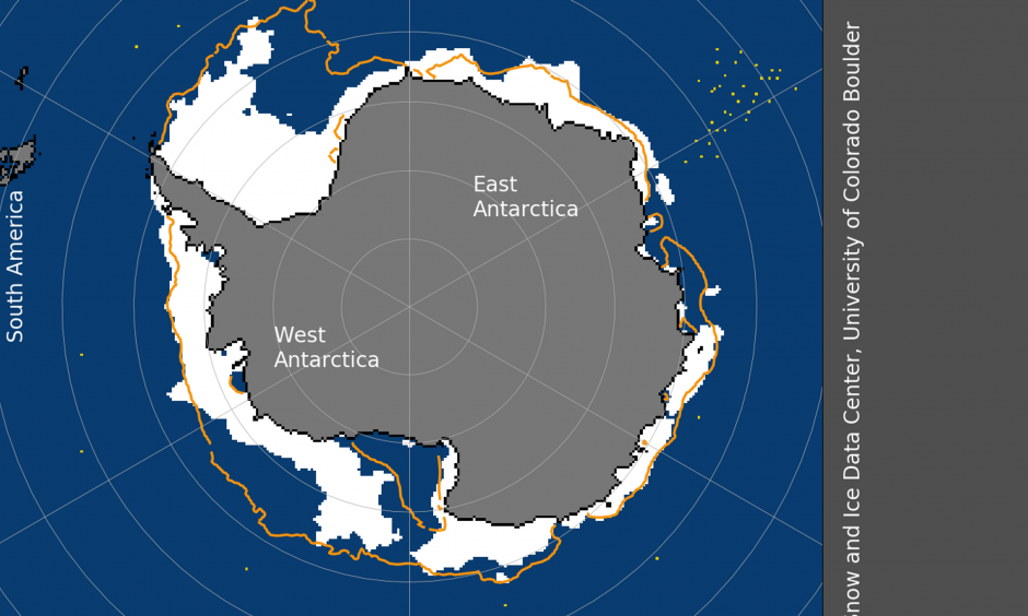 Sea ice extent, January 1, 2019. Image: National Snow and Ice Data Center