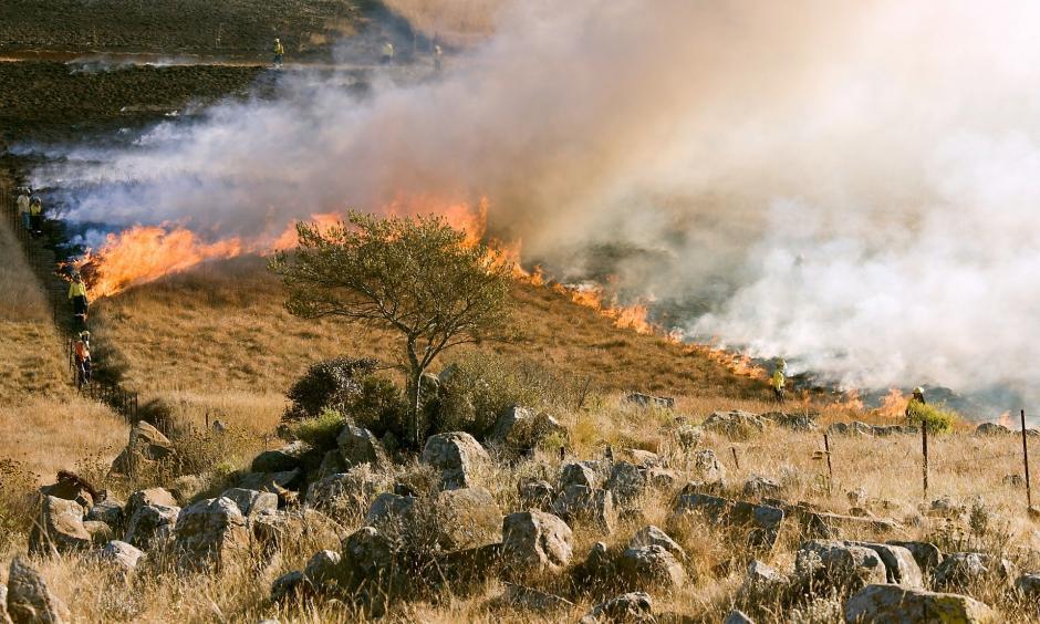 Wildfire. Credit: CC0 Public Domain