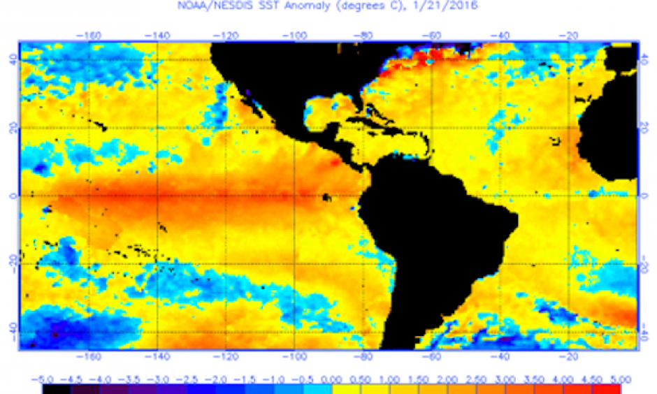 the wide view of anomalies that includes the Gulf and much of the Atlantic
