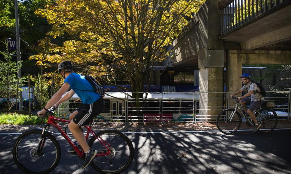 Bicyclists pass by a tree starting to show the season's changes on the Burke-Gilman Trail at the University of Washington campus on Wednesday. Photo: Lindsey Wasson / The Seattle Times
