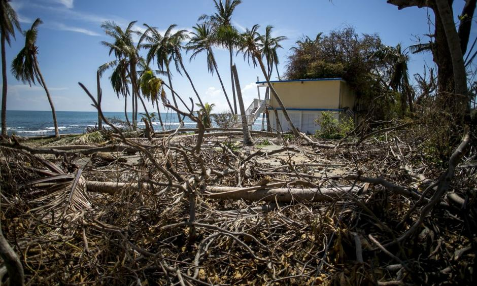 Plant debris sits outside of the damaged Caribe Playa Beach Resort after Hurricane Maria in Patillas, Puerto Rico, on Oct. 6. Photo: Xavier Garcia, Bloomberg