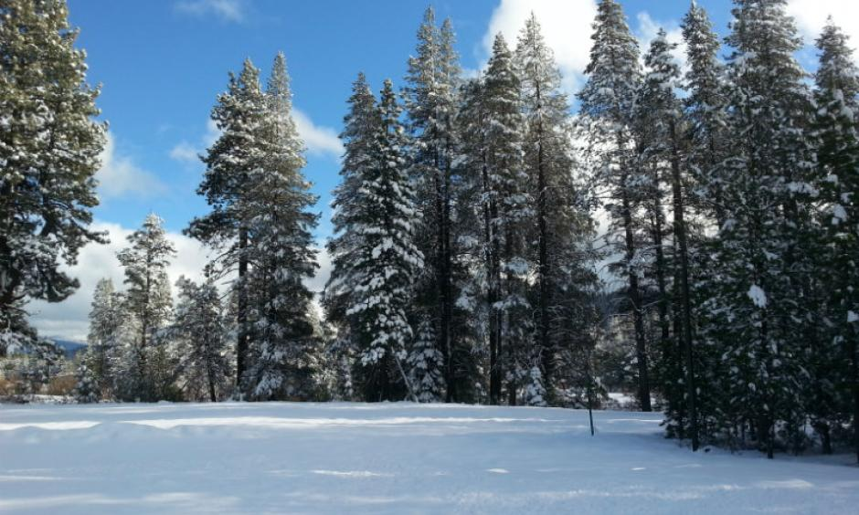 Several December storms brought snow to the Sierra Nevada. This view is from December 4, 2015 at Donner Memorial State Park in Truckee, Calif. Image: Woranuch Joyce, Capital Public Radio