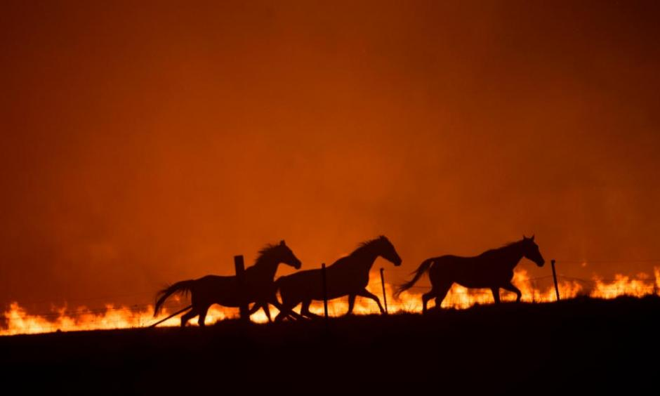 Climate change made the 2019-2020 bushfire season in Australia worse