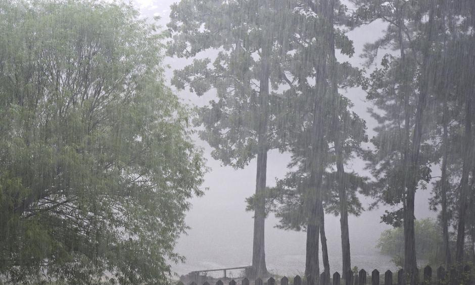 Heavy rain. Image: duckpond1, Flickr
