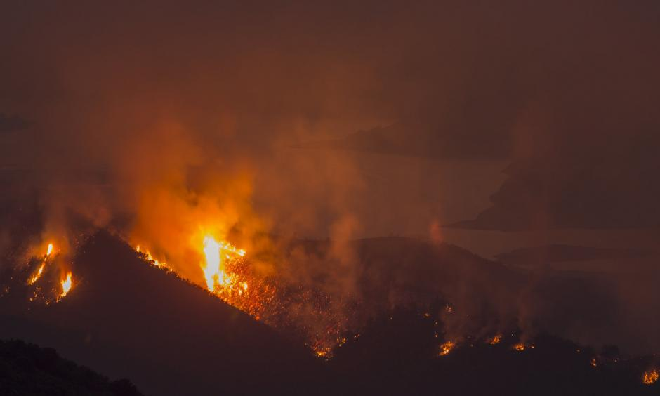 The Whittier fire burns next to Lake Cachuma on July 9 near Santa Barbara, California. Photo: David McNew, Getty Images