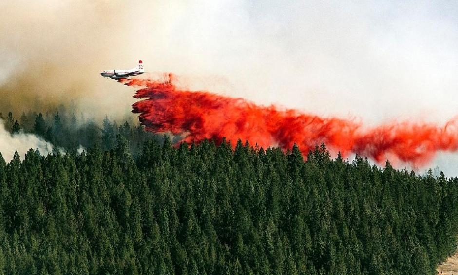 A plane drops a load of fire retardant on the north side of Beacon Hill, Sunday, Aug 21, 2016, in Spokane, Wash. The fast moving wildfire is threatening structures as it moves in a north-easterly direction. Photo: Colin Mulvany / The Spokesman-Review, via AP