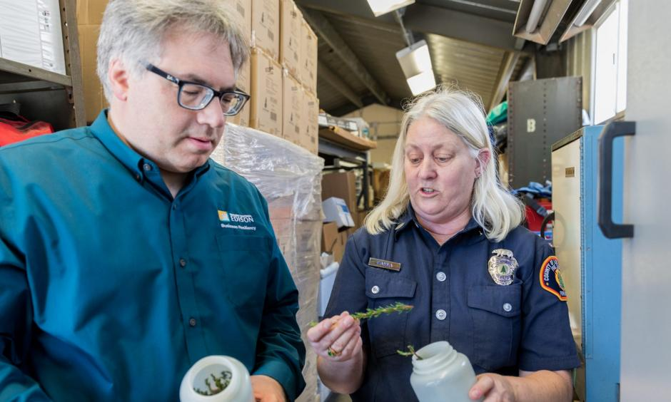 Tom Rolinski inspects sample vegetation at the SCE lab. Credit: Southern California Edison