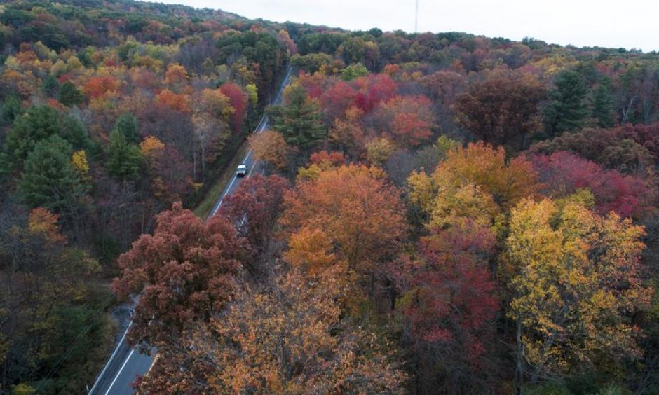 This Monday, Oct. 23, 2017 file photo shows fall colors emerging along Route 209 in Reilly Township, Schuylkill County, Pa. Photo: David McKeown, Republican-Herald via AP