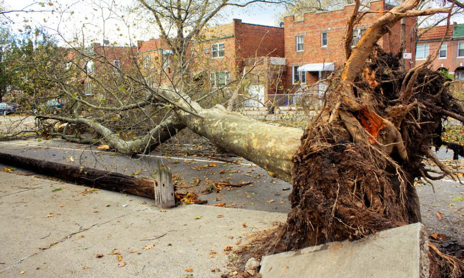 Hurricane Sandy, Brooklyn NY. Photo: Mike, Flickr