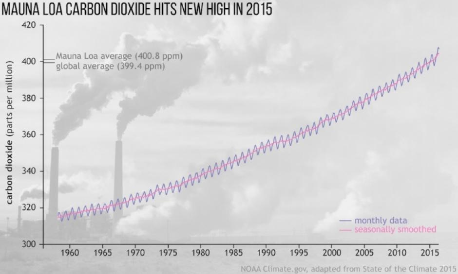 The rise of carbon dioxide levels in the atmosphere. Image: NOAA