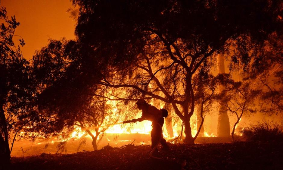 In this photo provided by the Santa Barbara County Fire Department, a firefighter knocks down flames as they approach a ranch near the Las Flores Canyon area west of Goleta, Calif., in the early morning hours of Thursday, June 16, 2016. The wildfire burning in rugged coastal canyons west of Santa Barbara is growing as it feeds on vegetation that hasn't burned in 70 years. Photo: Mike Eliason/Santa Barbara County Fire Department via AP