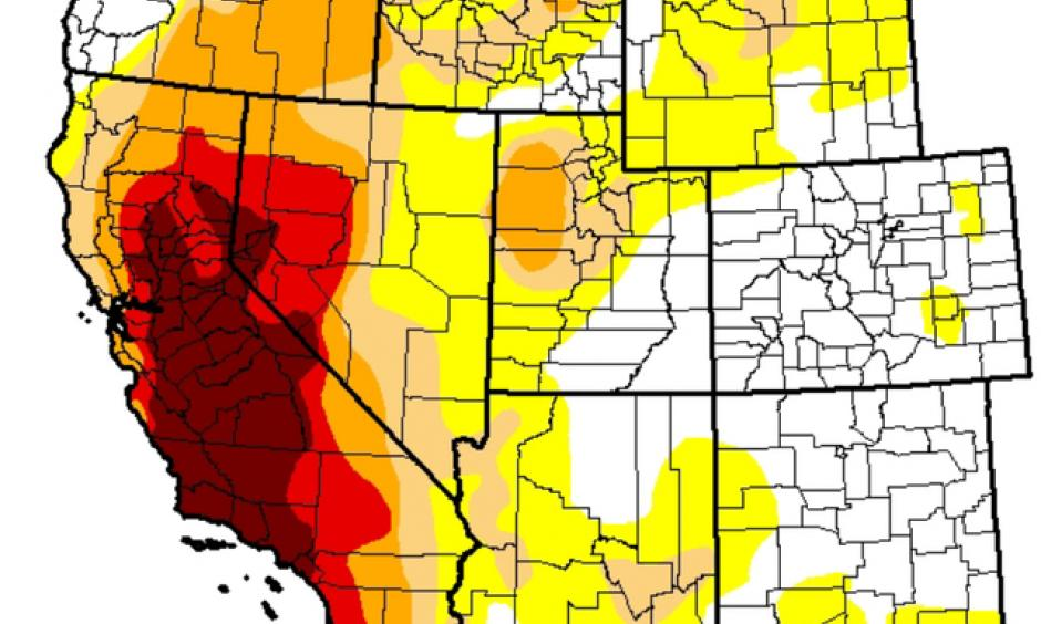 Drought conditions have only slightly improved this winter. Photo: Scripps Media