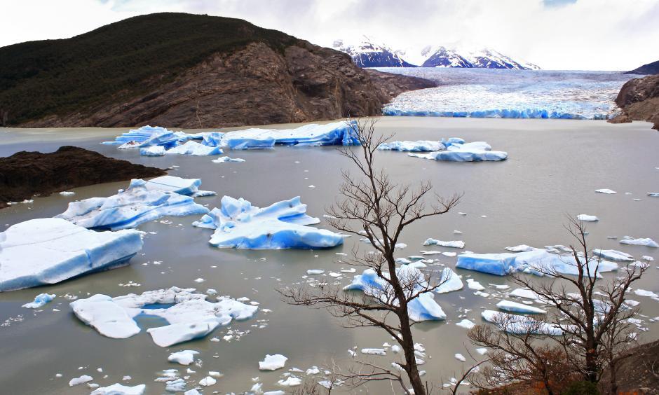 Icebergs, Grey Glacier, Patagonia, Chile. Image Credit: Dimitry B.