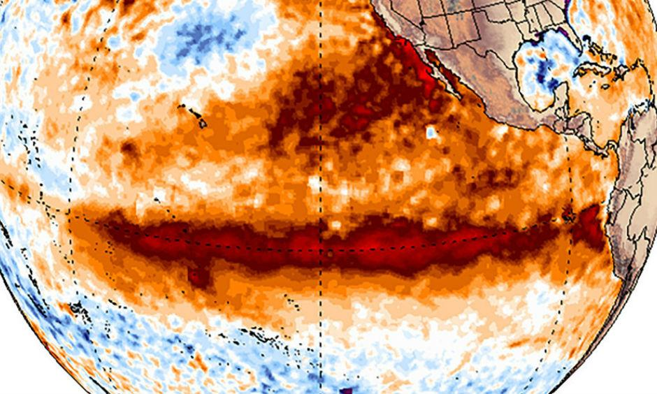 Sea surface temperature anomalies across the tropical Pacific Ocean, showing the hallmark pattern of El Nino. Image: Climate Reanalyzer