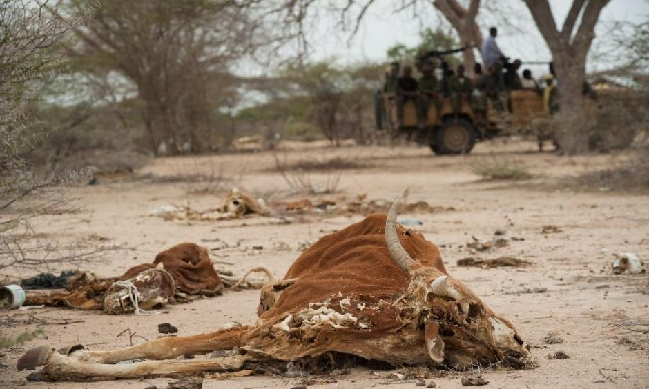 Severe drought and conflict in Somalia caused a famine in 2010-2012 that eventually killed a quarter of a million people Photo: AFP, Phil Moore