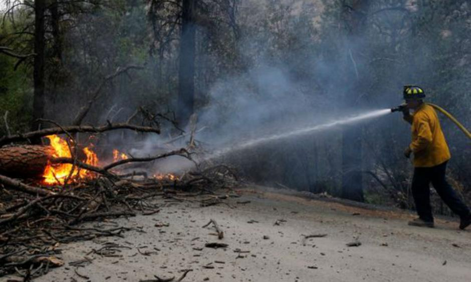 Firefighter Ryan Sundberg puts out a burning tree which fell across Salmon Creek Road outside of Okanogan County, as wildfires continue to burn throughout Washington, in Omak, Wash., on Aug. 21, 2015. (Photo: Genna Martin, AP)