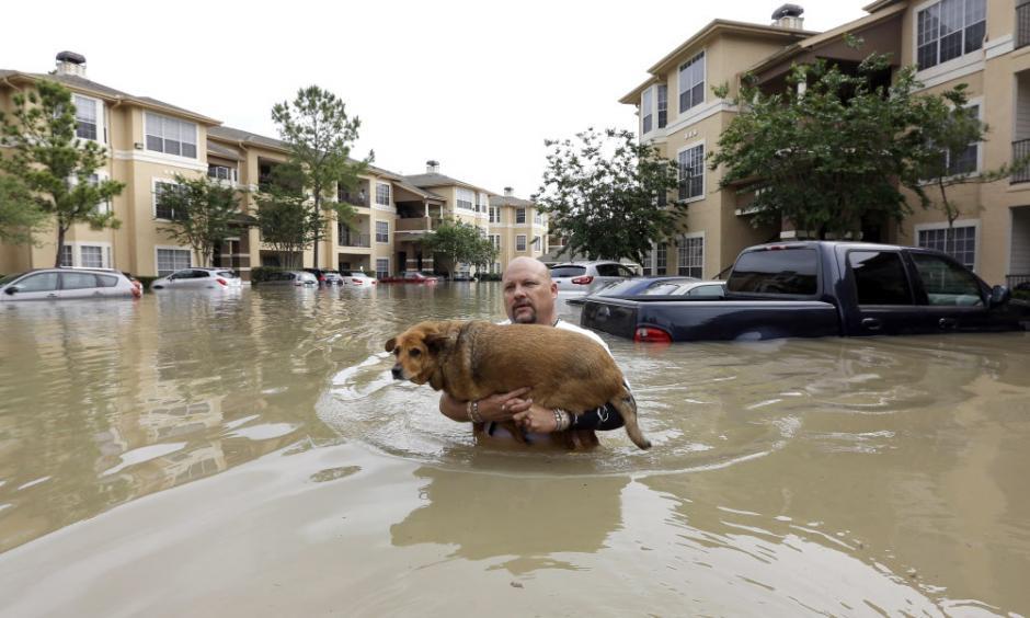 Photo: USA Today