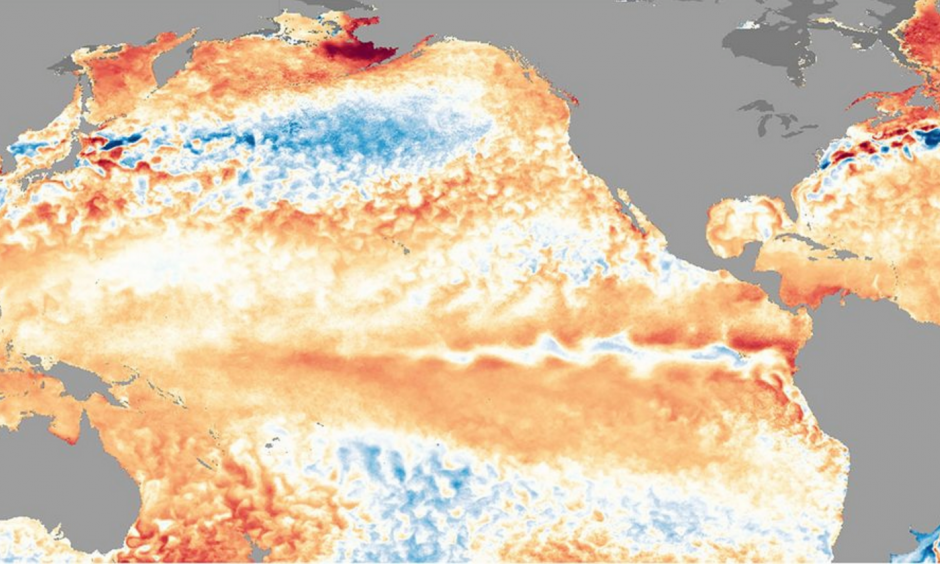 Sea surface temperature anomalies on May 12, 2016. Image: NOAA