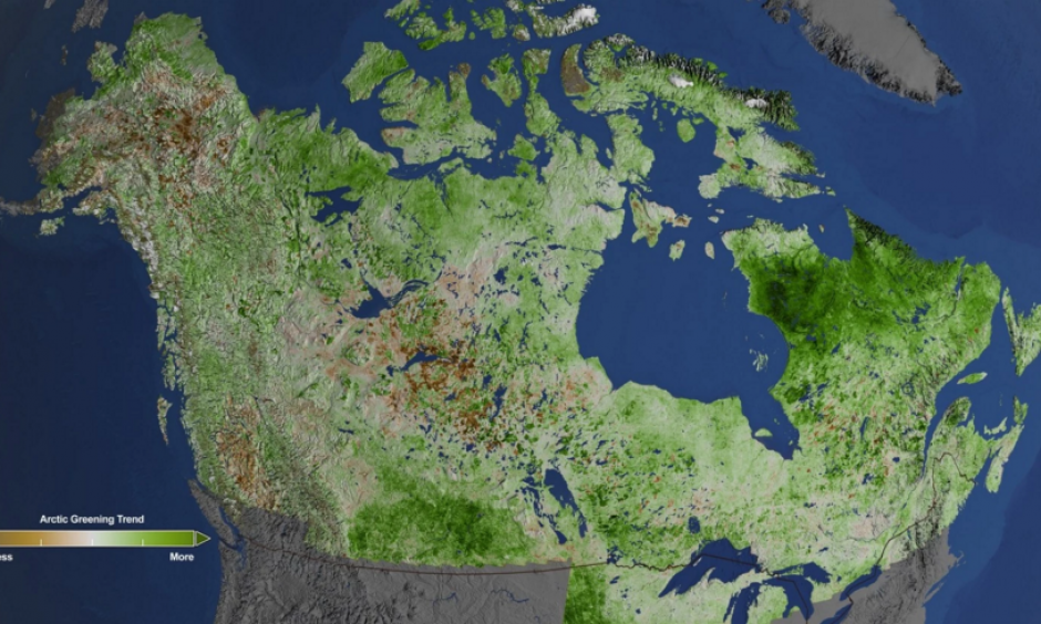 Using 29 years of data from Landsat satellites, researchers at NASA have found extensive greening in the vegetation across Alaska and Canada. Rapidly increasing temperatures in the Arctic have led to longer growing seasons and changing soil for plants. Image: Cindy Starr / NASA's Goddard Space Flight Center