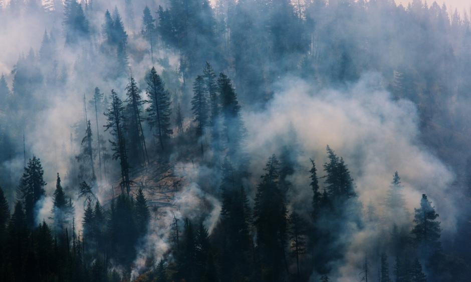 The Blue Creek wildfire, burning near Walla Walla, Wash., this month. Photo: Ruth Fremson, The New York Times