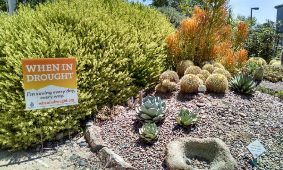A plant display in the Water Conservation Garden. Photo: Chris Jennewein