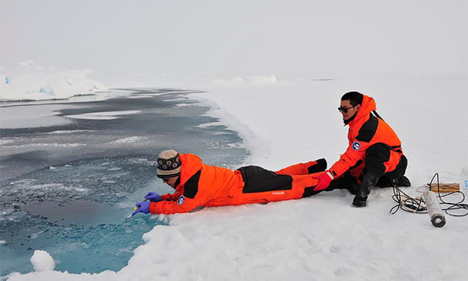 University of Delaware postdoctoral researcher Baoshan Chen (pictured left) takes water samples from a melting pond on ice in the northern Arctic Ocean basin while his Chinese collaborator assists. Photo: Di Qi and Zhongyong Gao, Third Institute of Oceanography, State Oceanic Administration of China.