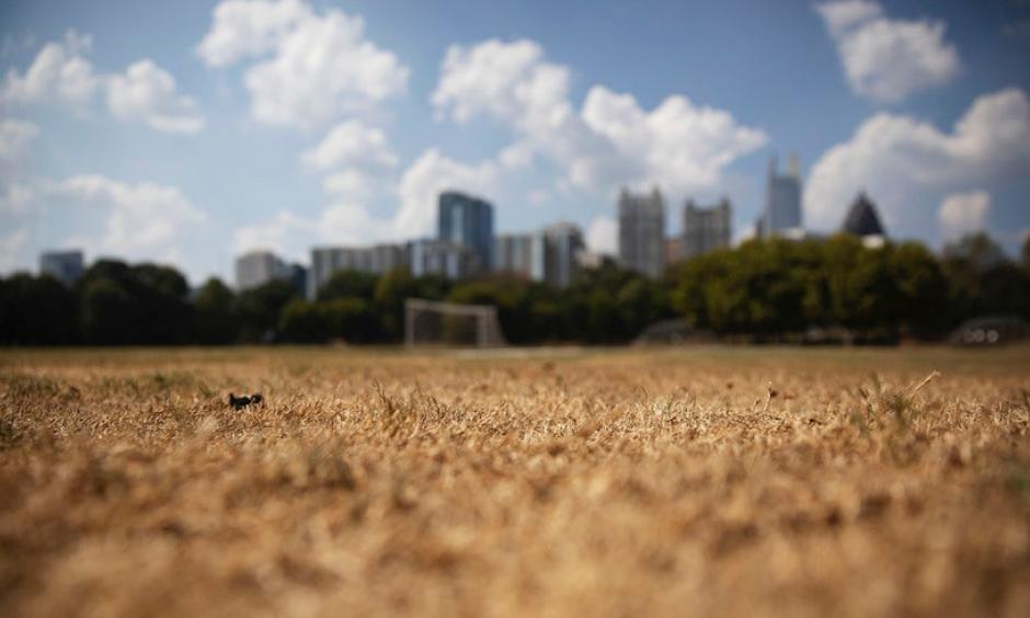 Dry grass from a lack of rain sits beneath the Midtown skyline in Atlanta on Thursday, Oct. 3, 2019. Scientists say more than 45 million people across 14 Southern states are in the midst of a rapidly intensifying drought that's cracking farm soil, drying up ponds and raising the risk of wildfires. The dry ground has helped surface temperatures soar to record highs for early October. Credit: David Goldman, AP