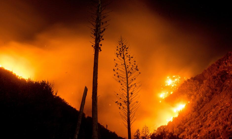The Blue Cut fire burns in Upper Lytle Creek near Wrightwood, Calif., on Friday. Photo: Noah Berger, AP