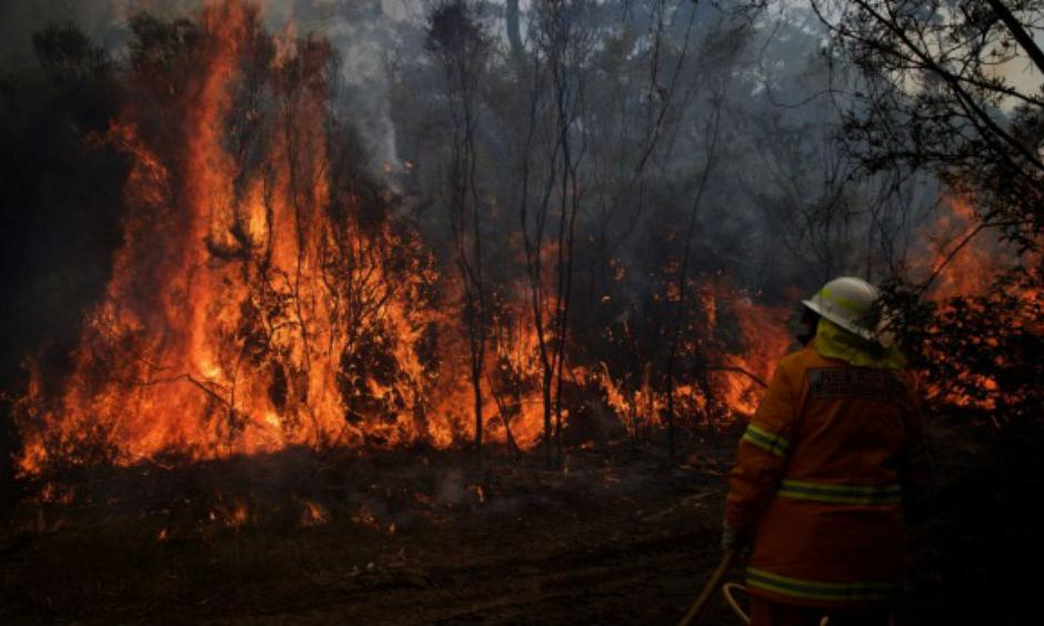 NSW Rural Fire Service crews struggle to contain an out of control bushfire around the Wentworth Falls escarpment in August. Photo: Wolter Peeters