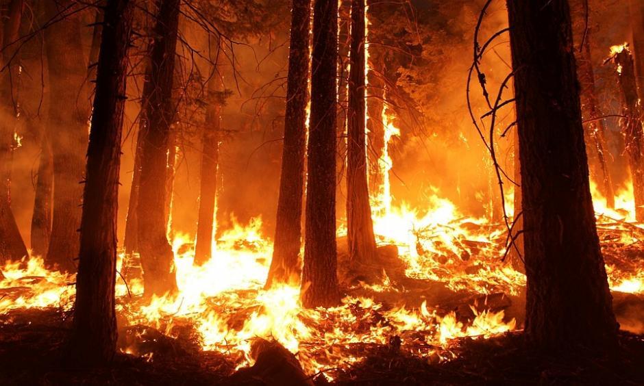 Australia widfire season (image: pixabay)