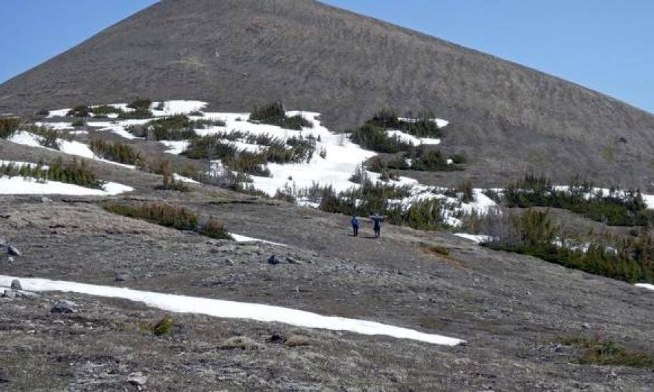 Low snowpack and bare ground is visible at 2,200 metres on this mountain in the Kananaskis Valley on May 21. Normally snowpack remains here until June. Photo: John Pomeroy
