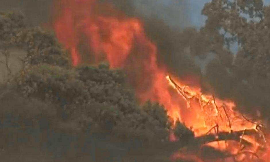 A fast-moving blaze dubbed the Sawmill Fire burns through brush and trees in Sonoma County, Calif., about 10 miles east of Cloverdale, Sept. 25, 2016. Photo: CBS San Francisco