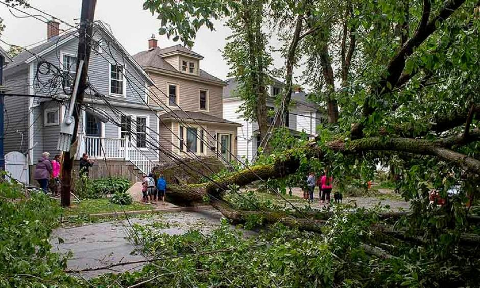 A street is blocked by fallen trees as a result of Hurricane Dorian pounding the area with heavy rain and wind in Halifax, Nova Scotia, on Sunday, Sept. 8, 2019. Credit: Andrew Vaughan/The Canadian Press via AP