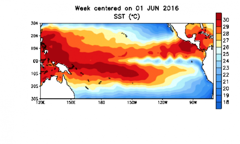 Sea surface temperature anomalies in the tropical Pacific show the dissipation of El Niño. Image: NOAA