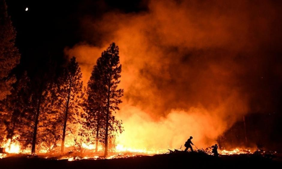 A firefighter battles the Ponderosa Fire east of Oroville, California, in late August. Photo: Noah Berger, Reuters