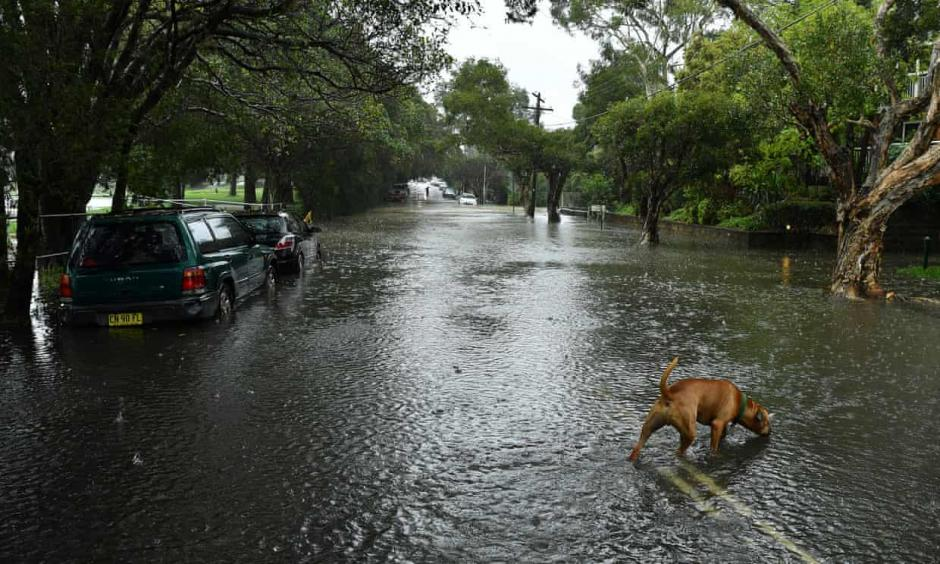 extreme rainfall caused flooding in Sydney