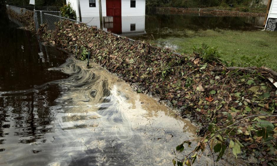 Filthy water seeps from detritus deposited from the Nuese River on the fence along George Skinner's property following flooding from Hurricane Florence September 17, 2018 in Kinston, NC. Photo: Chip Somodevilla, Getty Images