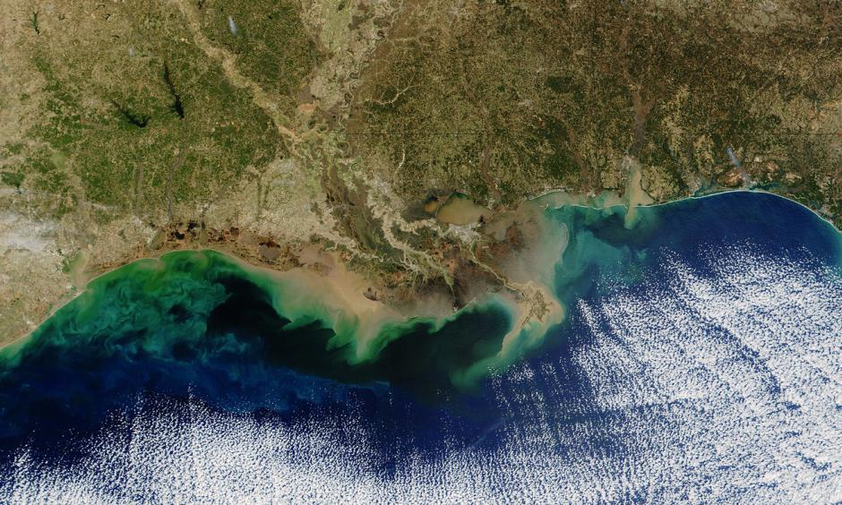 "The teal blue area along the Louisiana coastline represents a ""dead zone"" of oxygen-depleted water. Resulting from nitrogen and phosphorus pollution in the Mississippi River, it can potentially hurt fisheries. Photo: NASA/Getty Images"