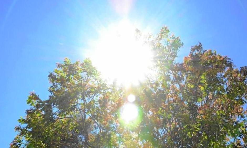 The sun blazed down on Grafton today, setting a new record temperature. Photo: Michael Nolan
