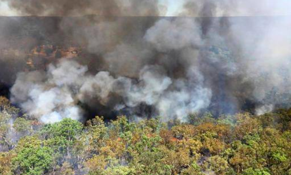 In this photo provided by the New South Wales Rural Fire Service smoke billows from a wildfire burning near Mudgee, Australia, Monday, Feb. 13, 2017. The fire has consumed more than 5000 hectares (12,350 acres) of bush and grasslands north-west of Sydney. Photo: NSW Rural Fire Service via AP