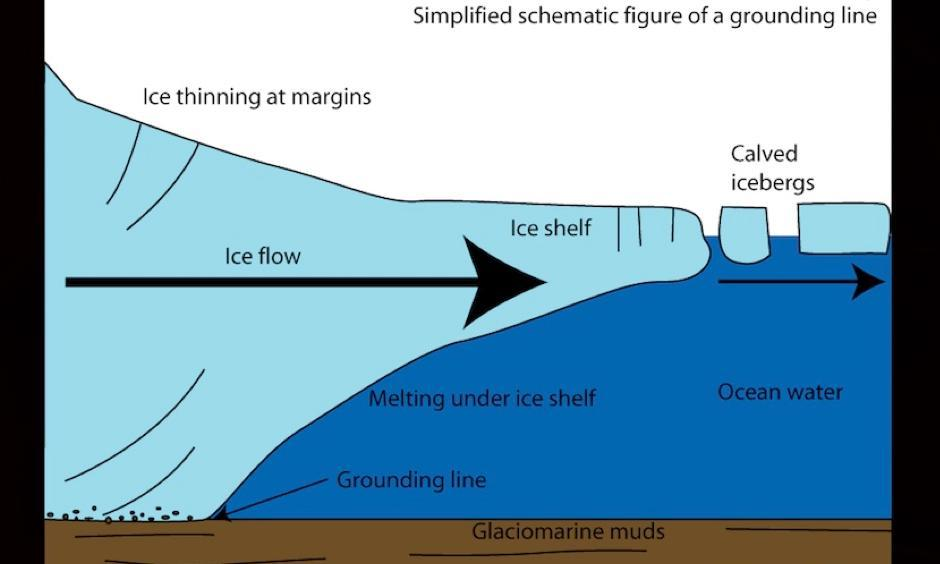 Schematic of an ice shelf (right) extending from a land-based glacier (left). The grounding line is the point where the ice, land, and sea intersect. Image: antarcticglaciers.org