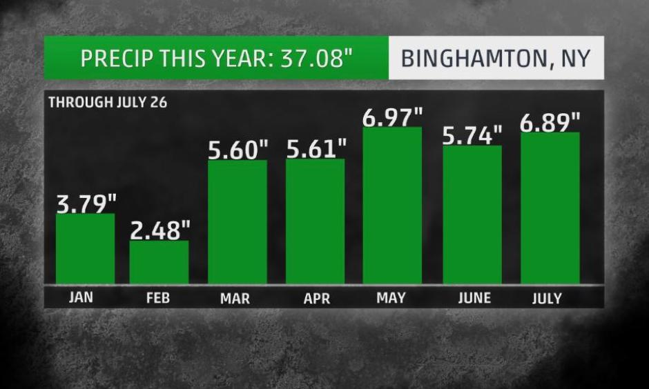 Precipitation totals by month this year in Binghamton, New York, through July 26. This includes rainfall and the liquid equivalent of melted snow. Image: The Weather Channel
