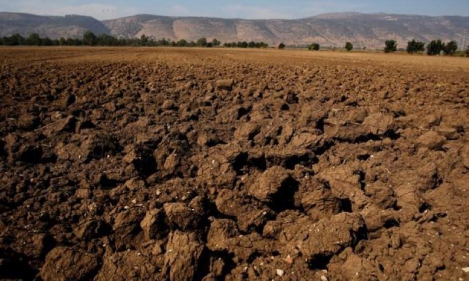 A dry agricultural field is seen in the Hula Valley, northern Israel October 23, 2017. Photo: Amir Cohen, Reuters