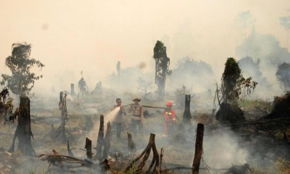 Police and a fire fighter from a local forestry company try to extinguish a forest fire in the village in Rokan Hulu regency, Riau province, Sumatra, Indonesia August 28, 2016 in this photo taken by Antara Foto. Picture taken August 28, 2016. Photo: Rony Muharrman, Antara Foto via Reuters